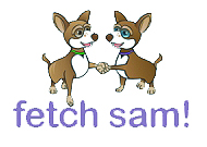 Fetch Sam!